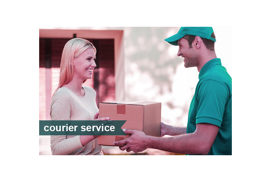 Courier services in south Delhi